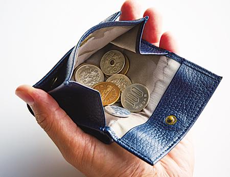 スナップボタンを開けると、大きく開くコインケース。これで硬貨 を手早く選び出せる。
