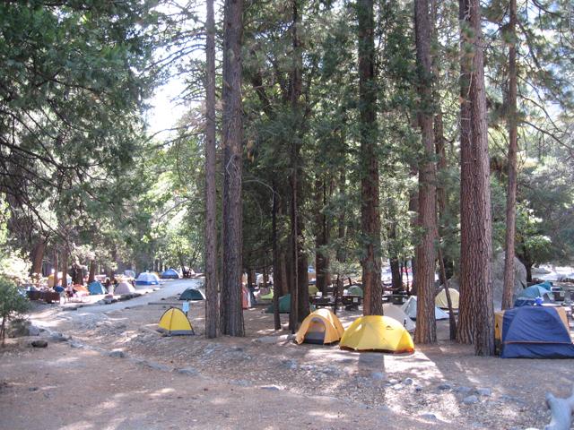 ここが「キャンプ4」。ヨセミテ公園内で唯一、予約なしでもOKのキャンプ場だ。
