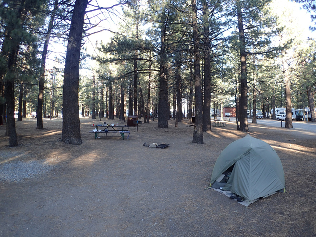 林間の心地よいキャンプサイト