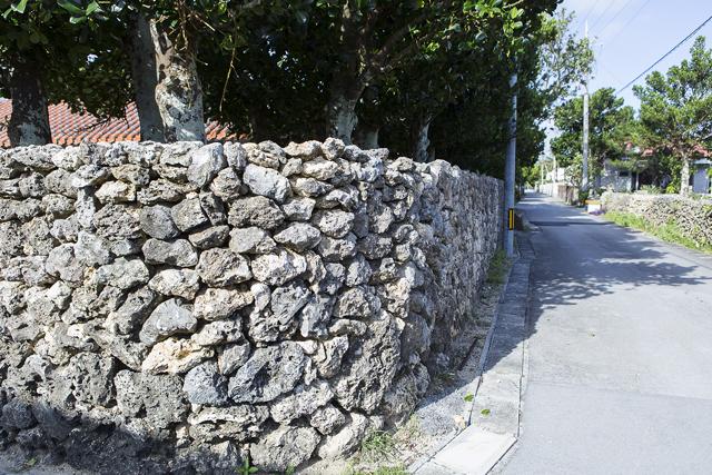 珊瑚を積み重ねた石塀。家を囲むように植えられているのは福木と呼ばれる防風林だ。