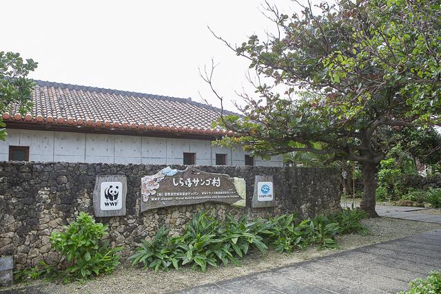 白保地区にあるWWFサンゴ礁保護研究センター「しらほサンゴ村」。珊瑚や伝統漁などに関するさまざまな展示物がある。TEL:0980(84)4135
