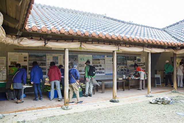日曜市は毎週開催で、しらほサンゴ村が会場。月桃かご作りや、郷土料理の体験メニューも。
