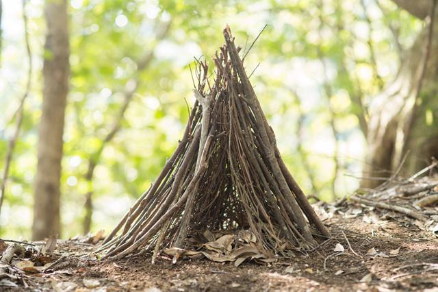 第三段階。10〜15㎜程度の枝で向こうが透けない厚みにまで覆う。「今回はわかりやすいように、普段の倍くらいの高さに組みました」とテンダーさん。