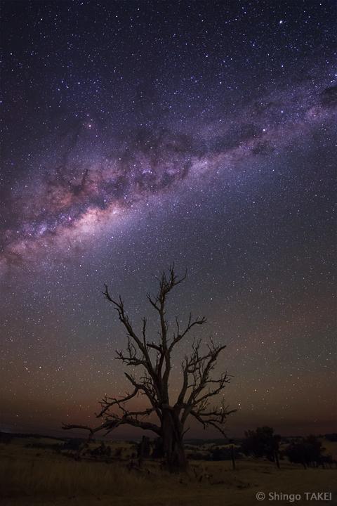 銀河の流れを見守り続けて / WA, Australia