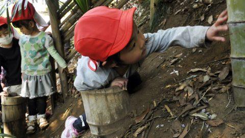 彼女は数センチずつからだを寄せて、身体を竹の切り株に引っかけた。自分なりに次の一手を出すための体制をつくった