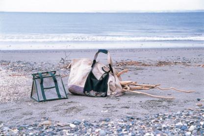 大きめのトートバッグはぽ んぽん流木が放りこめて便 利。貝殻や石はメッシュ地 のバッグに入れると浜を歩 くうちに自然に砂が落ちる。