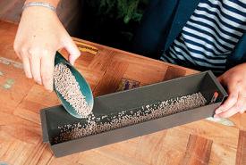 貯水プランターに専用の 培土を敷く。これが貯めた水を腐りにくくする。