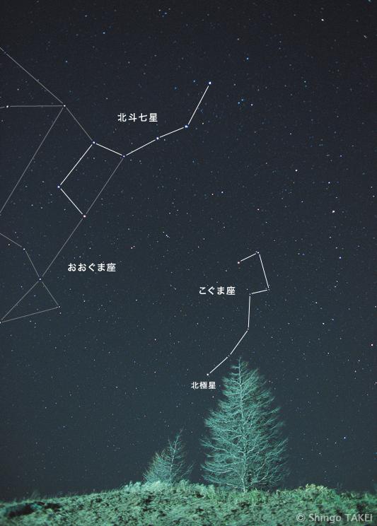 """本写真の画題は「星夜の親子」。""""親子に見えるニ本の樹""""と""""おおぐま座・こぐま座親子""""(ギリシャ神話より)のダブルミーニングだ"""