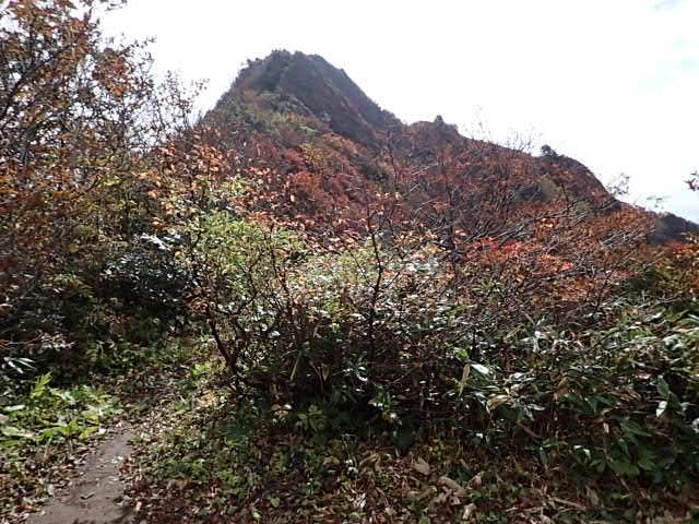 笹谷峠エリア
