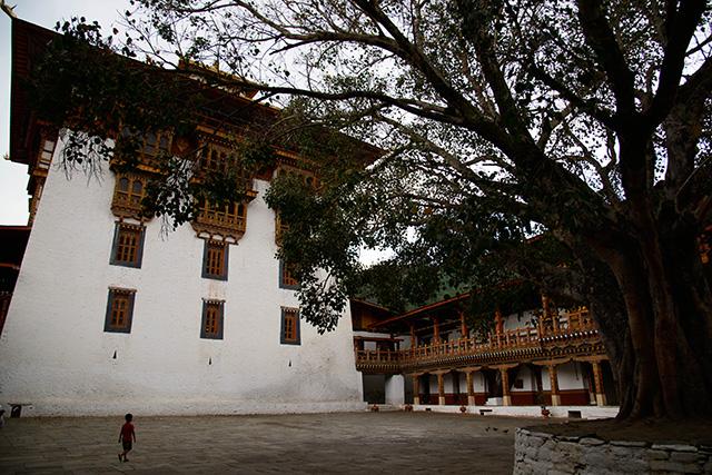 bhutan0303