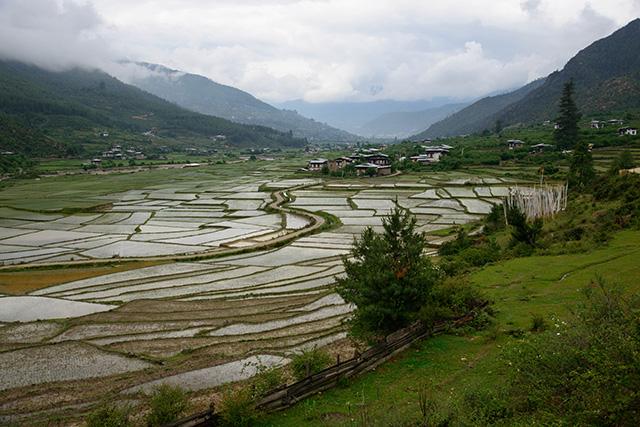 bhutan0404