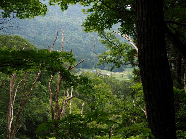 遠くに見える笹野集落。夕飯がすぐそこだと思うとテンション上がる(歩荷目線)!