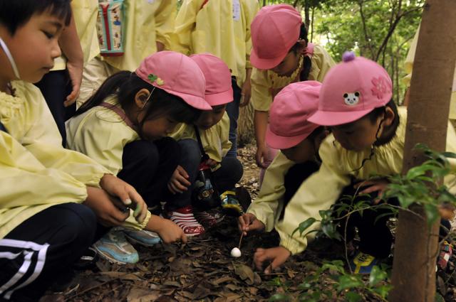 たくぼく集めの途中で謎のキノコを発見 皆木の枝で突っついたりしてその感触を楽しんだ 子供達曰く「ポニポニ」しているらしい