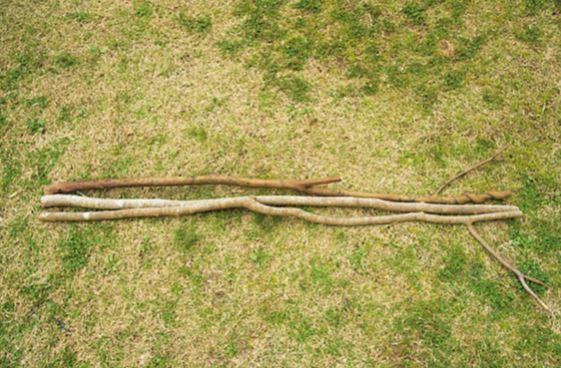 同じぐらいの太さの枝3本。中 心が芯になるので、なかでも太い ものを置く。上方の枝は鍋などを 掛けられるように残しておく。