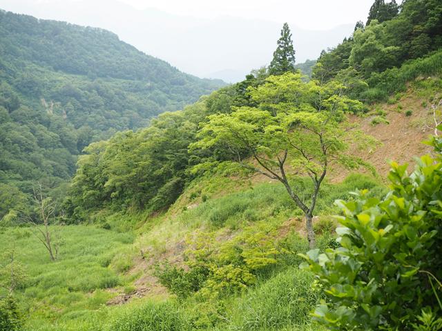 横川→殿行へ向かう道は最近地滑りがあったため、道が失われています。気をつけて渡るべし。