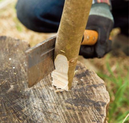 扌脚の先端は、土に刺しやすいようにく さび状に削っておくと安定する。中心に 向かって斜めに3、4辺を削る。