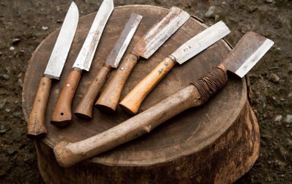用途に合わせて使い分けるのが鉈 長野さん愛用の鉈の一部。右から2本は薪割り用の両刃鉈。柄を5 回取り替えた20年使用の大きい鉈は、その重さにより最小限の力 で薪が割れる。次の1本が片刃鉈。杭など木を削る作業や枝打ちな どに使う。4本目は竹鉈で竹を割ったり削いだりするほか、箸作り などの細かい削り作業にも使える。最後の2本は剣先鉈。右は刃の カーブが枝葉を捕らえるので藪払いに、左は塊肉料理用のナイフと して使うことも多々。ホームセンターやアウトドア店で購入可能。