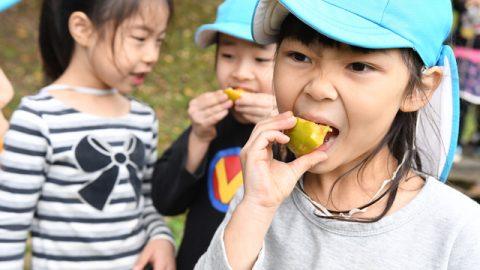 みんなで柿を回し食い。種の周りの部分さえ前歯で削って最後までみんなで食べた