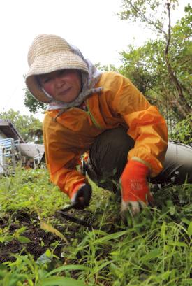 神奈川県生まれ。大学で林業を学び後に菜園家に。循環型農園や森林整備などを行なう「NPO環~WA」(茨城県)の理事を務める。