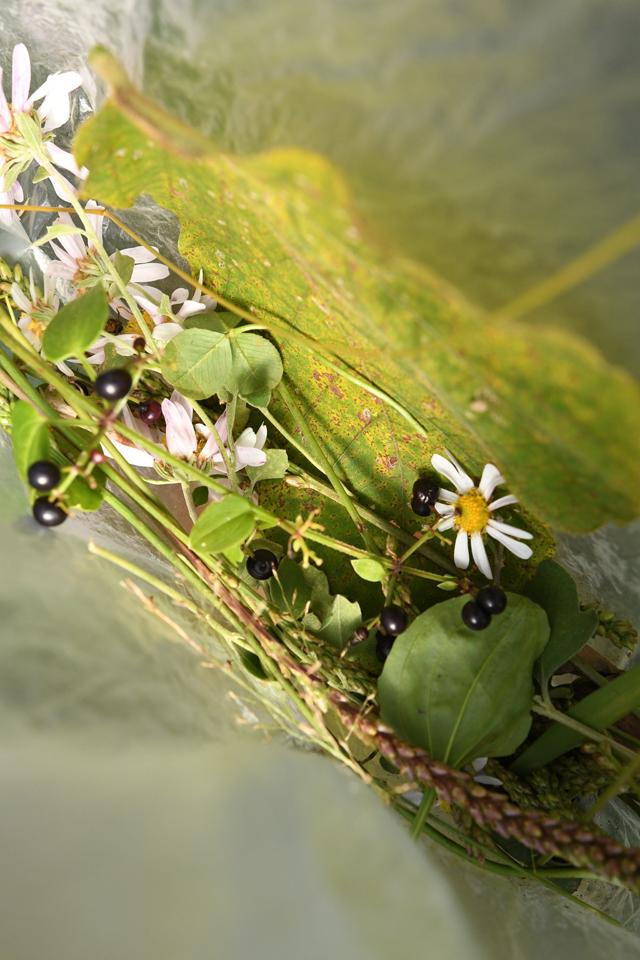 とある女の子の袋の中。お花と実、そしてかわいい葉っぱで構成されていた。