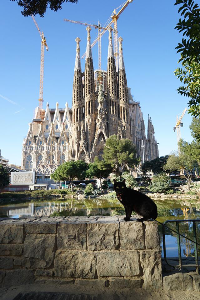 バルセロナ(スペイン)2015