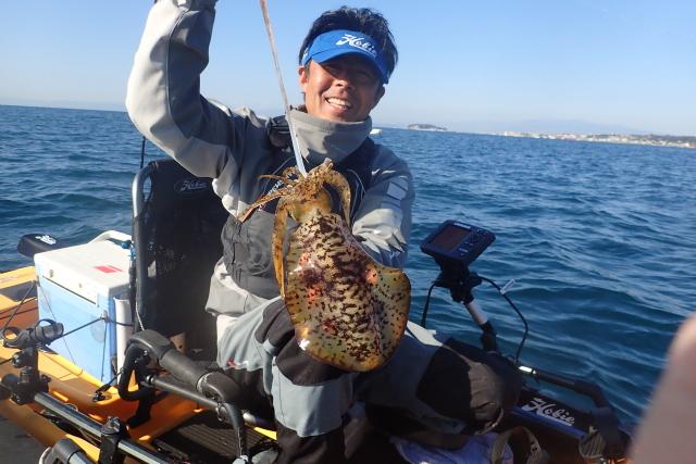 沼野さんはアオリイカ釣りが一番好きらしい