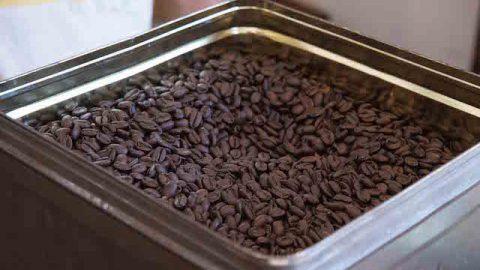 煎りたての豆は一粒一粒がふっくらして美味しそう。