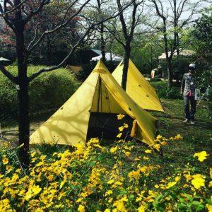 黄色テント