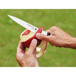 フルーツの皮を剥くのに便利。刃が薄いので、果物の皮も薄くスラスラと剥ける。