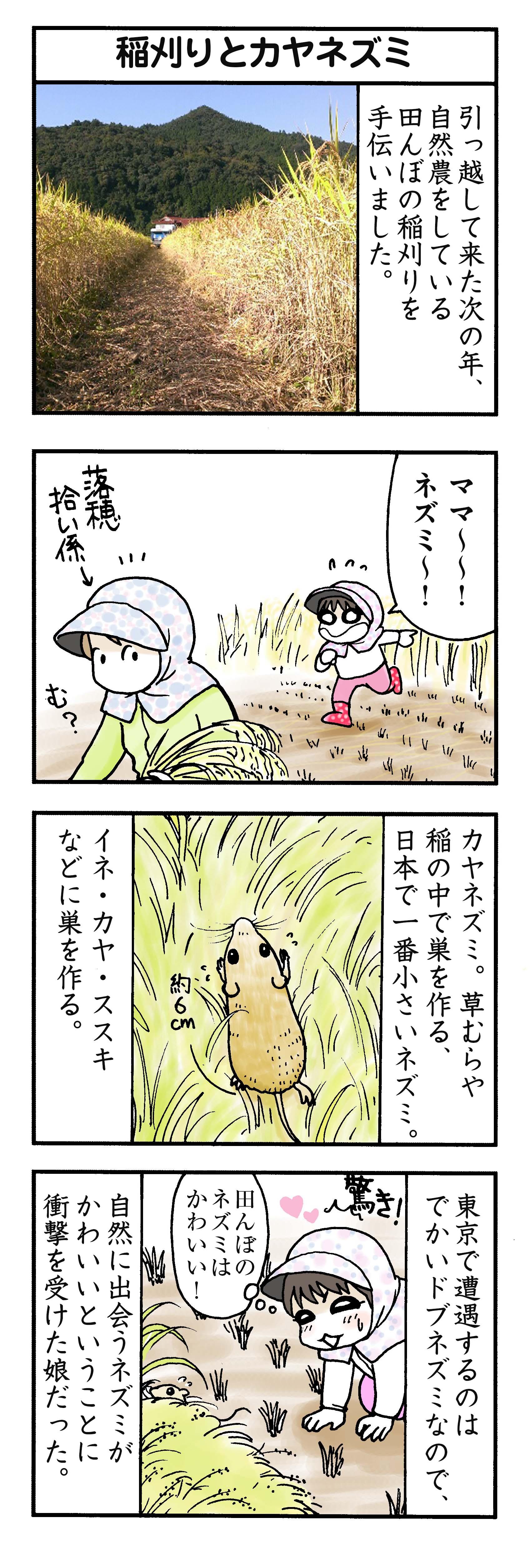 を マンガ 田舎 紹介