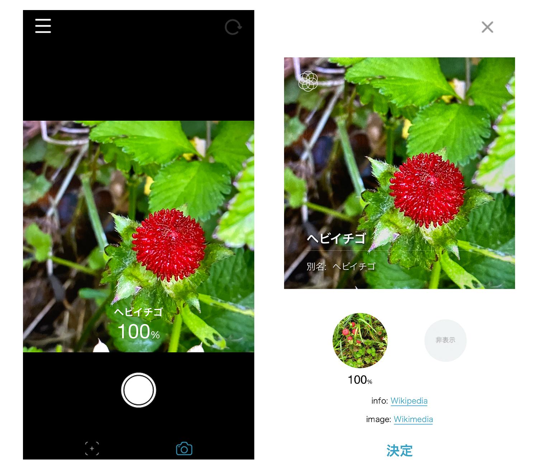 ハナノナアプリ カメラモード