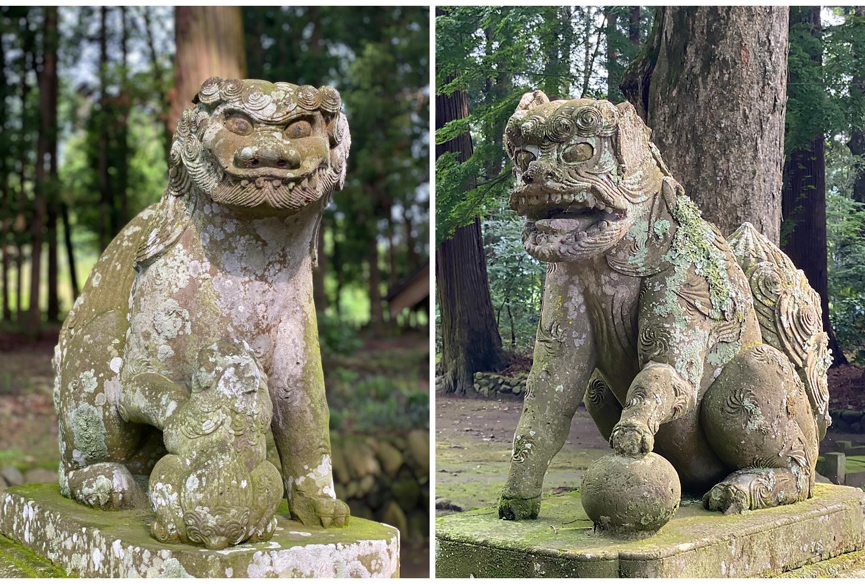 八槻都々古別神社の狛犬
