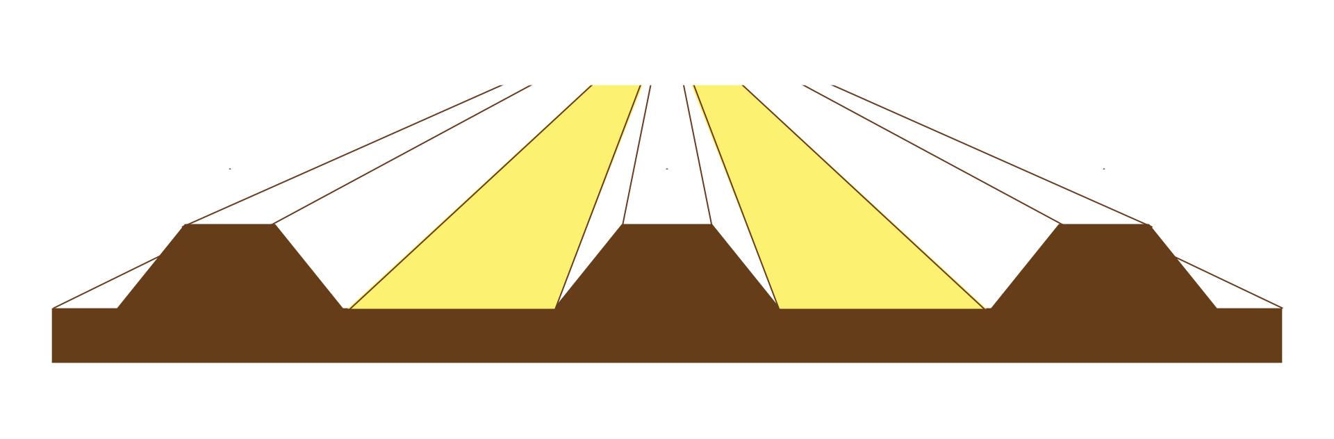 畝の断面図